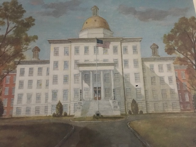 picture of white school with gold dome and flag in front
