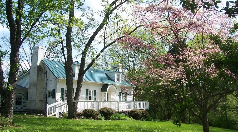 House with dogwood tree blooming in the spring