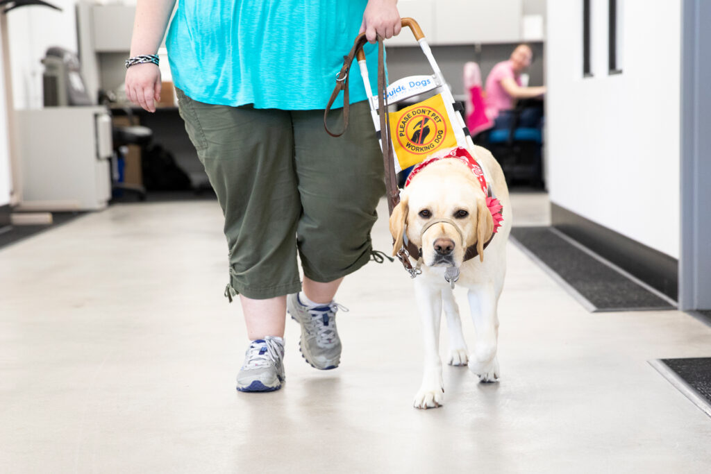 woman walking with guide dog in office setting